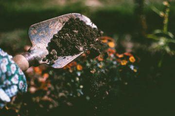 Geen zin om uw tuin bij te werken? Schakel een expert in
