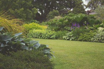 Is uw tuin nog wel goed onderhouden?